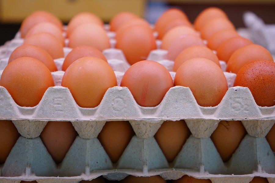 Jaja ze śladami salmonelli trafiły z Polski na rynek UE