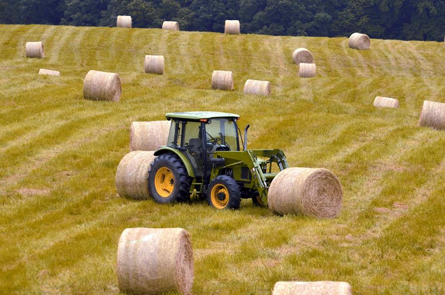 Rolnicy dostaną ok. 9 mld zł zaliczki na unijne dopłaty
