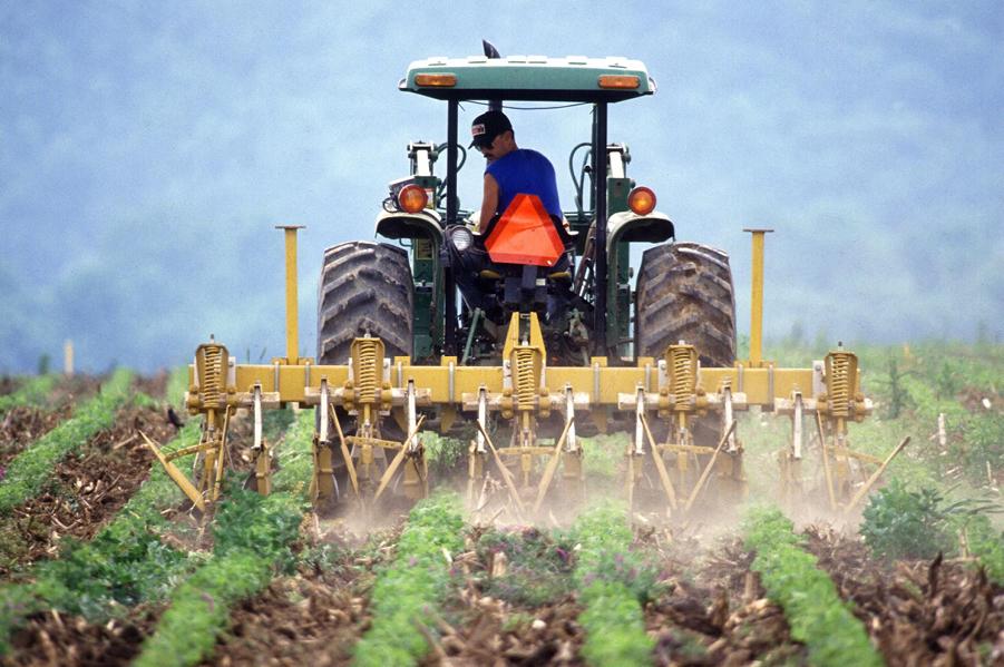 Rolnicy mogą uzyskać 60 tys. zł premii na rozwój gospodarstw