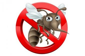 Ciemniejsza strona wiosny – sposoby na komary i alergie