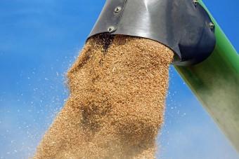 PIH złożyła propozycję nowelizacji ws. ustawy o Agencji Rynku Rolnego