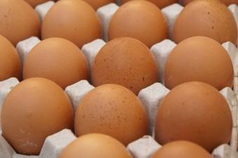 Niebezpieczne jajka nie były wysyłane do Polski