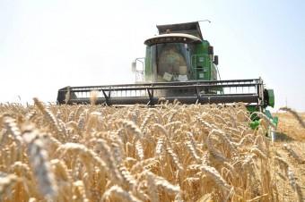 Delta Agrar planuje debiut na giełdzie w Warszawie i Wiedniu