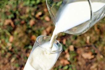 Sertop – wkrótce Dzień Mleka
