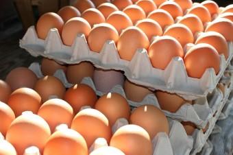 Kolejne firmy rezygnują z jaj klatkowych