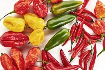 Piekielnie ostre papryczki chili w ofercie
