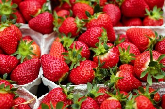 Suszenie żywności ujemną temperaturą jest coraz częściej stosowaną technologią