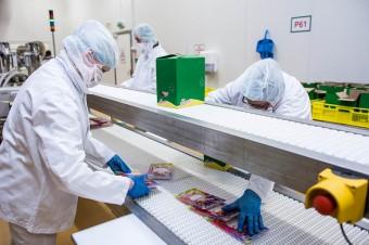 Drobimex znacznie zwiększa sprzedaż na zagranicznych rynkach