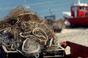 Polska domaga się zmiany w polityce rybołówstwa UE. Potrzebne limity połowów i wsparcie dla rybaków