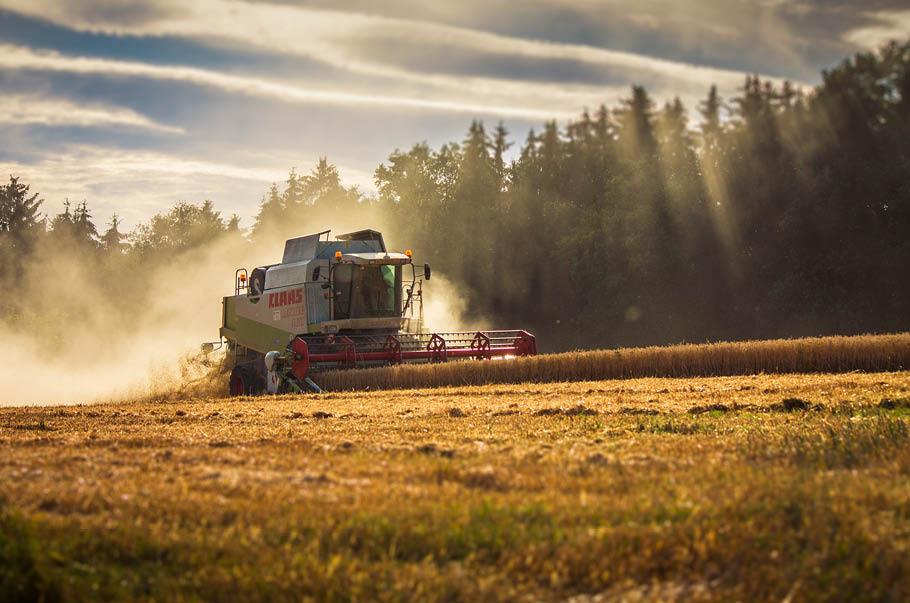 Polscy rolnicy najmłodszymi w Europie