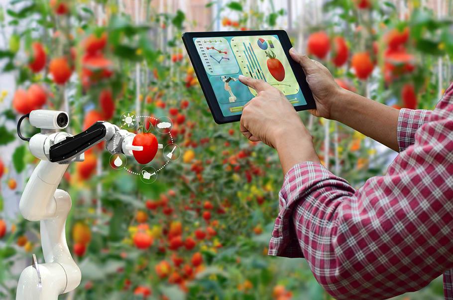 Coraz więcej startupów działa w branży rolnospożywczej