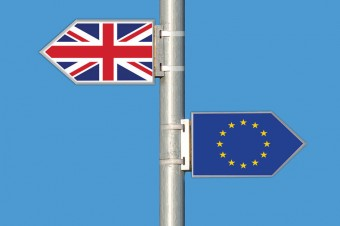 W jaki sposób Brexit wpłynie na polskich sadowników? – komentarz Unii Owocowej